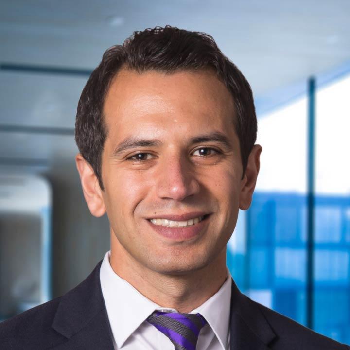 Hisham Hussan