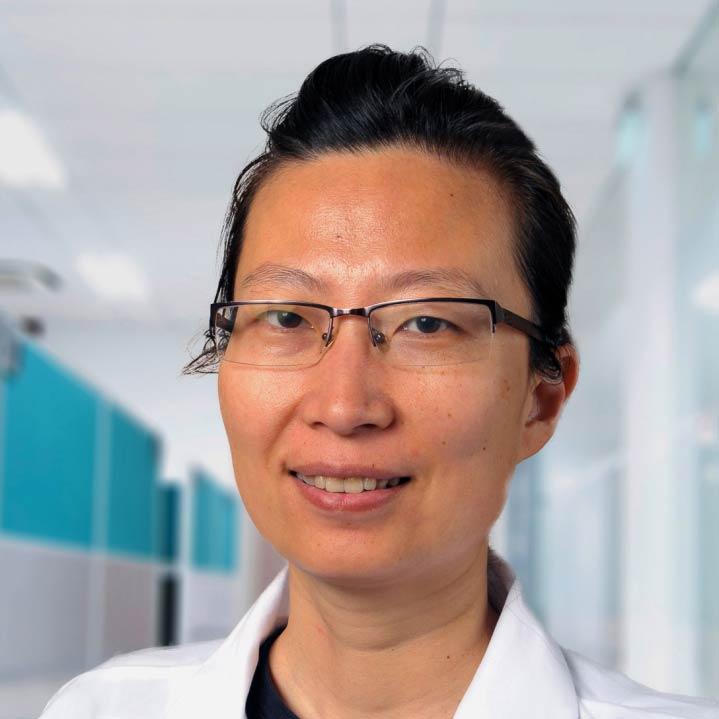 Xiaomei Meng